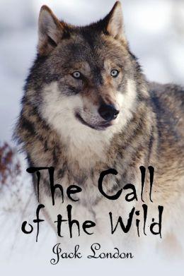 Call Of The Wild at EssayPedia.com