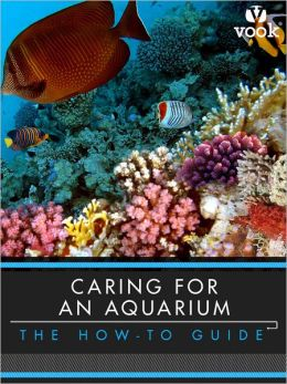 Caring for an Aquarium: The How-to Guide