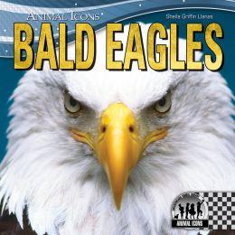 Bald Eagles eBook