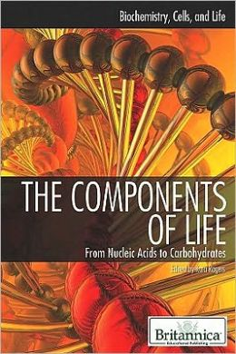 The Components of Life: From Nucleic Acids to Carbohydrates