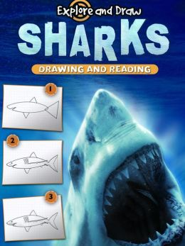 Sharks: Drawing and Reading