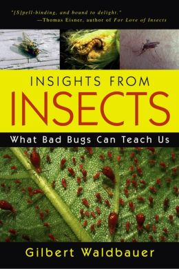 Insights From Insects: What Bad Bugs Can Teach Us