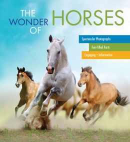 The Wonder of Horses