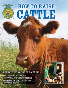 How to Raise Cattle: Everything You Need to Know