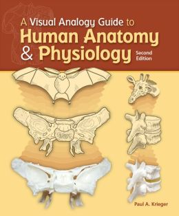 A Visual Analogy Guide to Human Anatomy & Physiology, Second Edition
