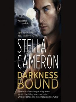 Darkness Bound: Chimney Rock Series, Book 1