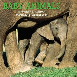 2014 18-Month Baby Animals Wall