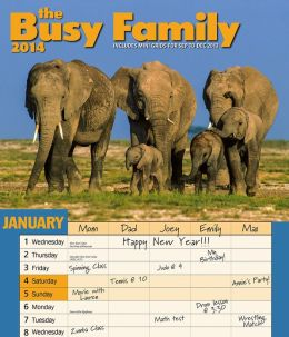 2014 Busy Family Wall Calendar