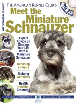 Meet the Miniature Schnauzer