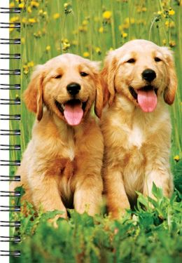 Wire-o Journal Pups