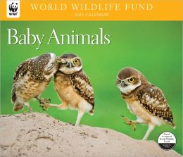 2013 Baby Animals WWF Wall Calendar