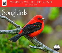 2014 Songbirds WWF Wall Calendar