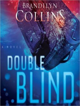 Double Blind: A Novel