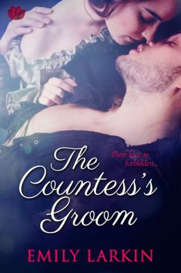 The Countess's Groom