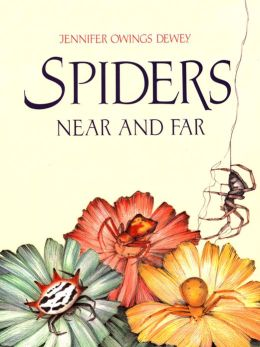 Spiders Near and Far