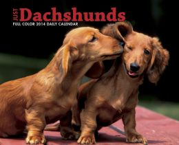 2014 Just Dachshunds Box Calendar