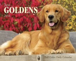 2014 Just Goldens Box Calendar