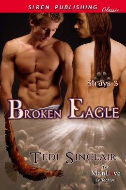 Broken Eagle [Strays 3] (Siren Publishing Classic ManLove)