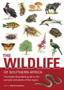 Wildlife of Southern Africa: The Larger Illustrated Guide to the Animals and Plants of the Region