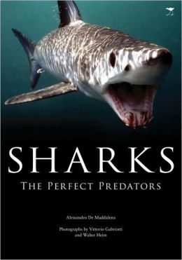 Sharks: The Perfect Predator
