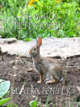 Beatrix Potter: The Short Stories