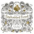 Book Cover Image. Title: Enchanted Forest:  An Inky Quest & Coloring Book, Author: Johanna Basford