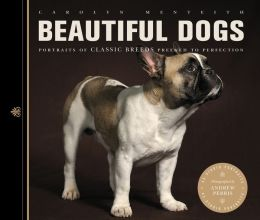 Beautiful Dogs: Portraits of Classic Breeds Preened to Perfection