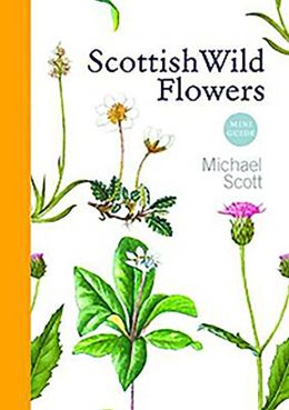 Scottish Wild Flowers: Mini Guide