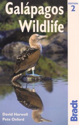 Galapagos Wildlife: A Visitor's Guide