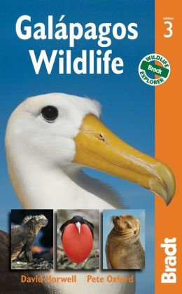 Galapagos Wildlife, 3rd