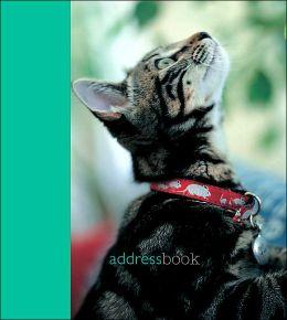 CATS & KITTENS MINI ADDRESS