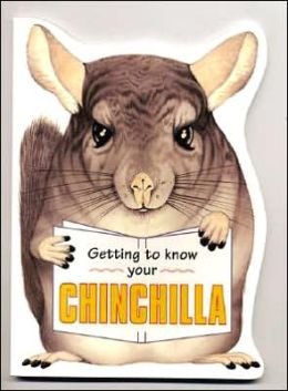 Getting to Know Your Chinchilla