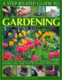 A Step-by-Step Guide to Gardening