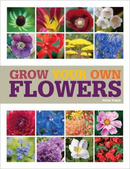 Grow Your Own Flowers