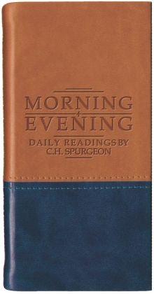 Morning and Evening - Matt Tan/Blue