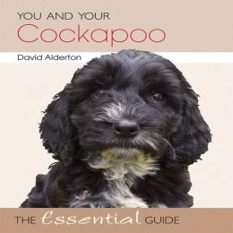 You and Your Cockapoo: The Essential Guide