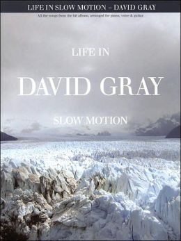Life in Slow Motion: David Gray