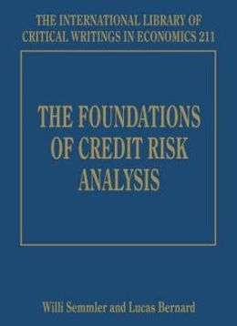 The Foundations of Credit Risk Analysis