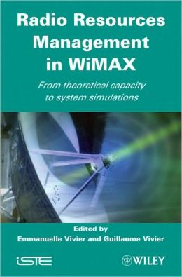 Radio Resources Management in WiMAX: From Theoretical Capacity to System Simulations
