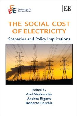 The Social Cost of Electricity: Scenarios and Policy Implications