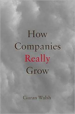 How Companies Really Grow