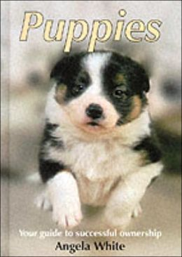 Puppies: Your Guide to Successful Ownership