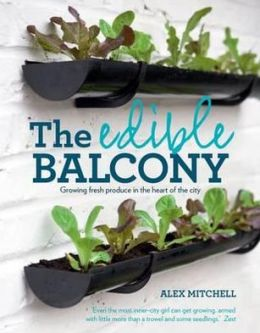 Edible Balcony: Growing Fresh Produce in the Heart of the City