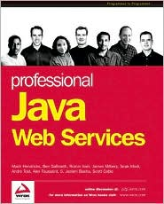 Professional Java Web Services
