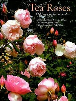 Tea Roses: Old Roses for Warm Gardens