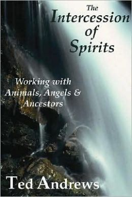 The Intercession of Spirits : Working With Animals, Angels & Ancestors