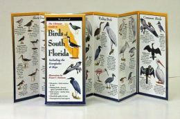Ultimate Guide to Birds of South Florida