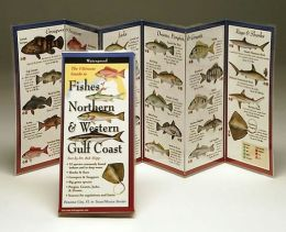 The Ultimate Guide to Fishes of the Northern And Western Gulf Coast