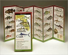 The Ultimate Guide to Fishes of Florida's Atlantic Coast