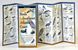 Ultimate Guide to Birds of the Southeast Atlantic Coast